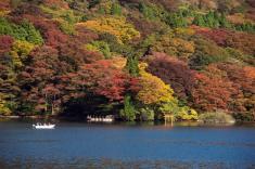 Du lịch Nhật Bản Mùa Hoa Anh Đào 4 ngày 3 đêm